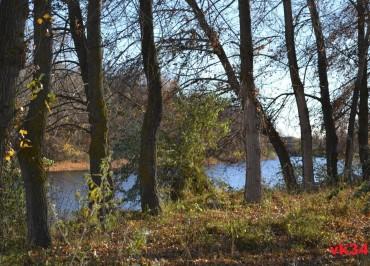 1-prirodniy-park-srednyaya-ahtuba