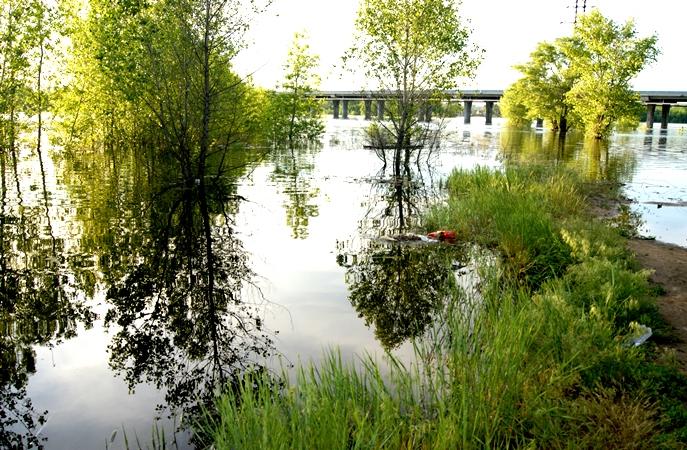 Весеннее половодье в Волгоградской области будет в пределах среднемноголетних значений