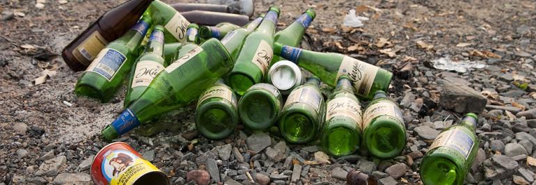 Волжане присоединились к экологической акции «Чистый берег»