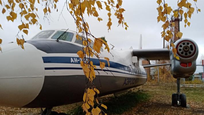 АН-24 установили на парковке аэропорта «Богашево»