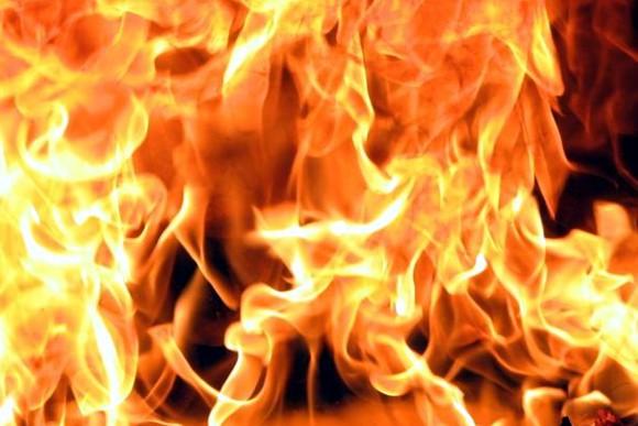 Виновники возгорания в парке «Волжский» понесут наказание