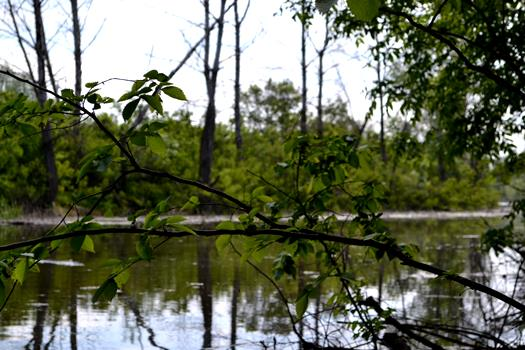 Посещение природных парков Волгоградской области станет платным