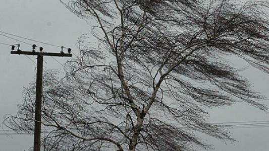 Волгоградской области ожидаются грозы с усилением ветра порывами до 18 метров в секунду