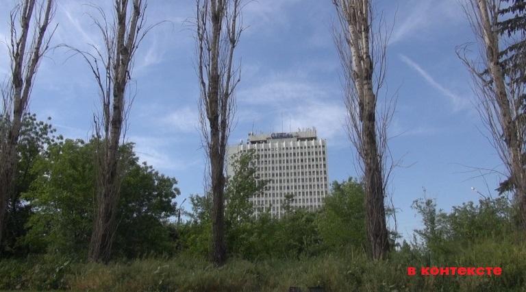 Власти Волжского забыли о тополевой аллее в самом центре города