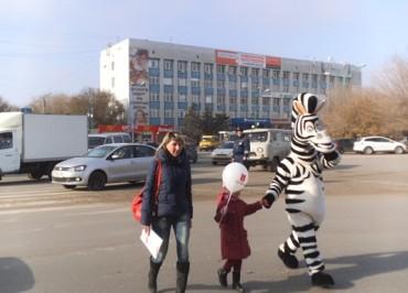 volgzkiy-zebry-dps